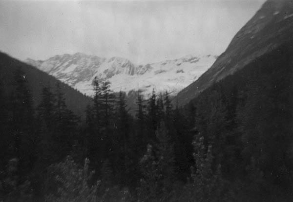 Bonny Glacier