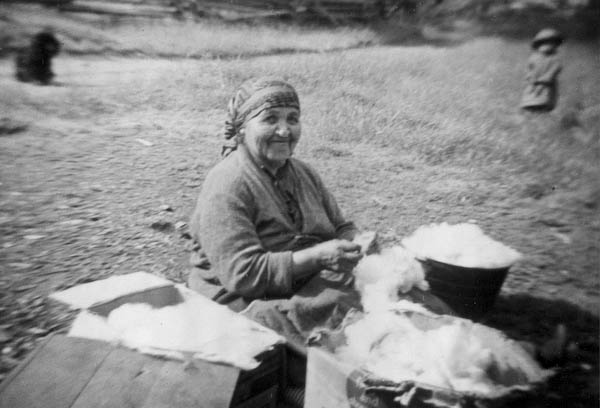 Indian Woman Teasing Wool