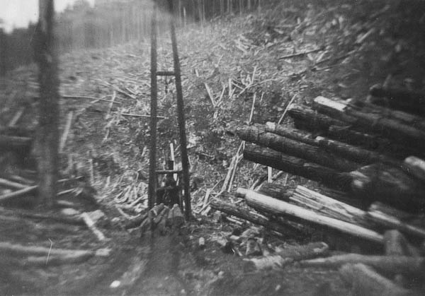 Heap of logs (and Crane)