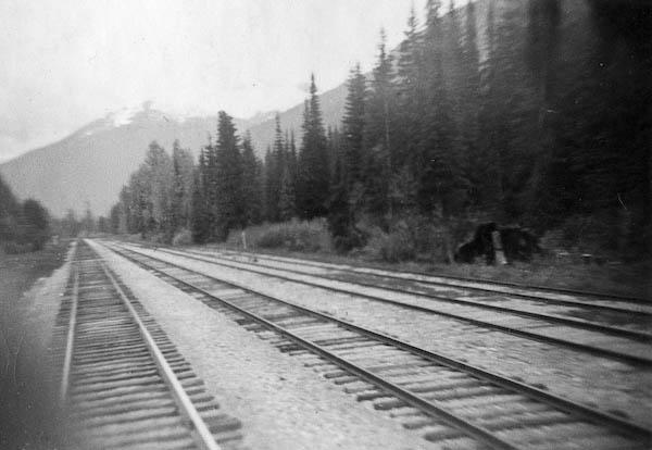 Mainly Railroad Tracks