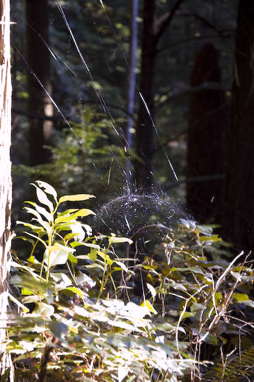 canada_the_rock_web_11-3
