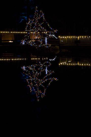 capallano_xmas_lights_dec_11-22