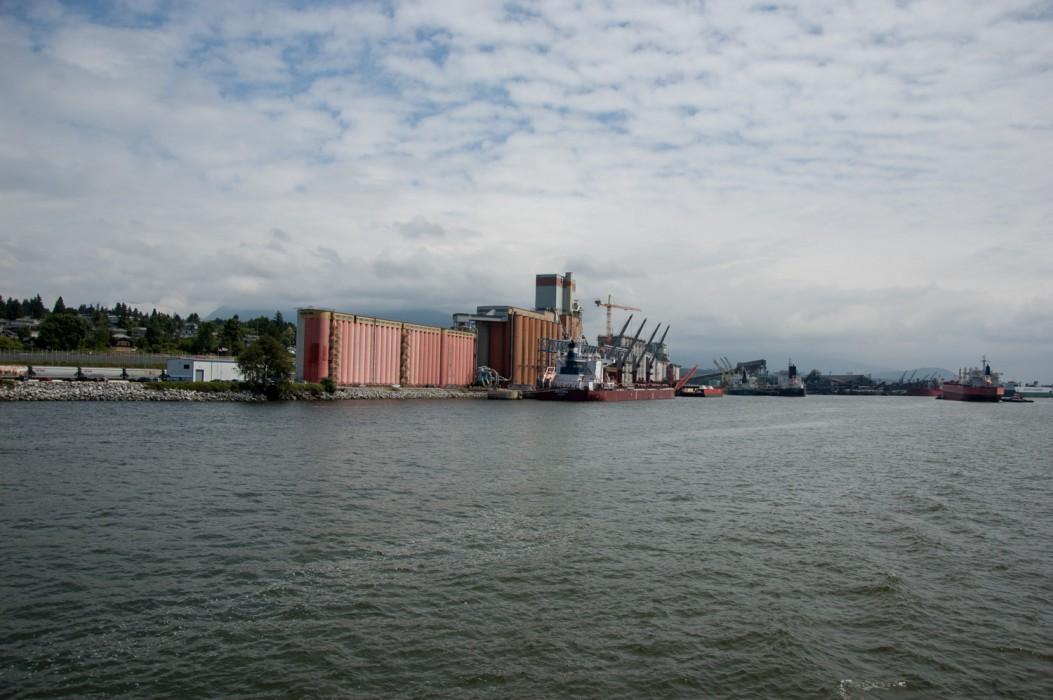 harbour-tour-14-6